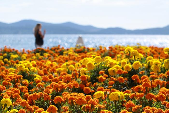Croatia – a destination for the summer holidays 2012