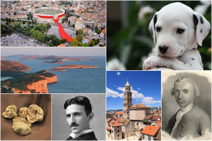 List of top 10 most famous Croatians who have changed the world!
