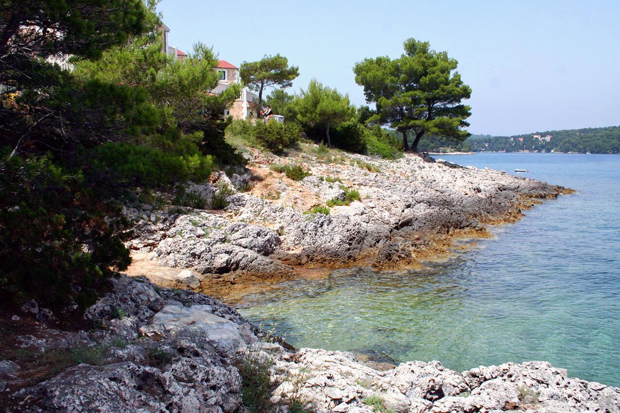 Ferienwohnung im Ort Jelsa (Hvar), Kapazität 2+2 (1013654), Jelsa (HR), Insel Hvar, Dalmatien, Kroatien, Bild 9