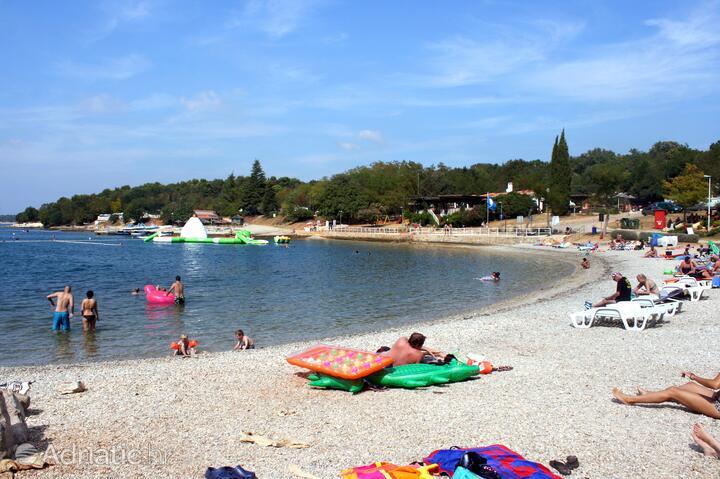 Strand kroatien fkk porec Tagesausflug von