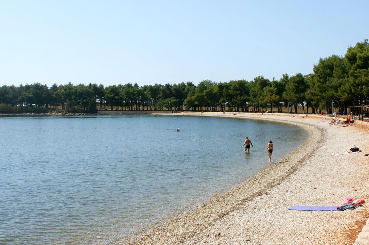 dovolená Novigrad