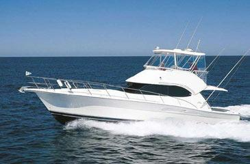 Yacht charter Riviera 42 | C-MB-664