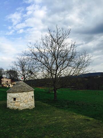 Zajci an der Riviera Središnja Istra (Istra)