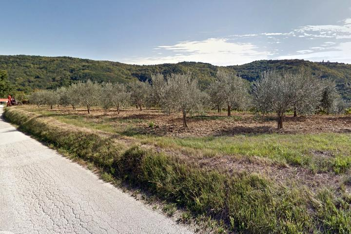 Sovinjsko Polje in riviera Središnja Istra (Istra)