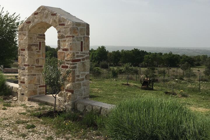 Slivnica u rivijeri Zadar (Sjeverna Dalmacija)