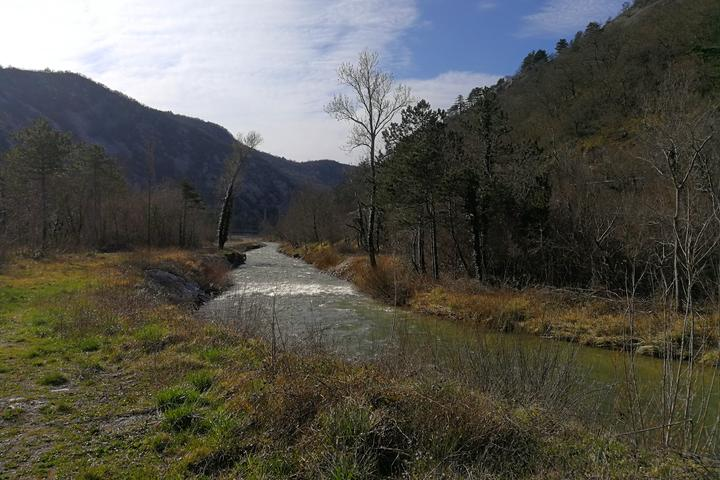 Kamenjak на Ривьере Crikvenica (Kvarner)