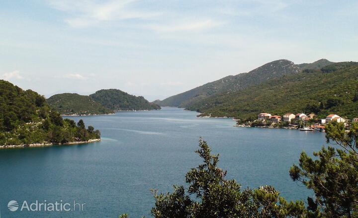 Polače Mljet szigeten (Južna Dalmacija)