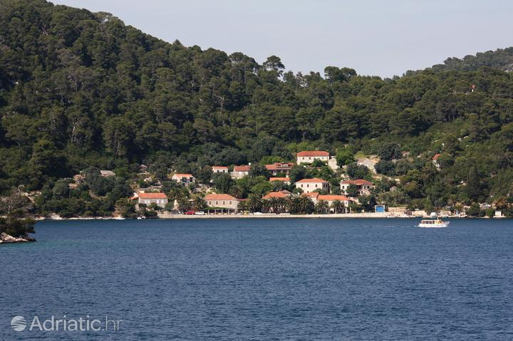 Babine Kuće on the island Mljet (South Dalmatia)