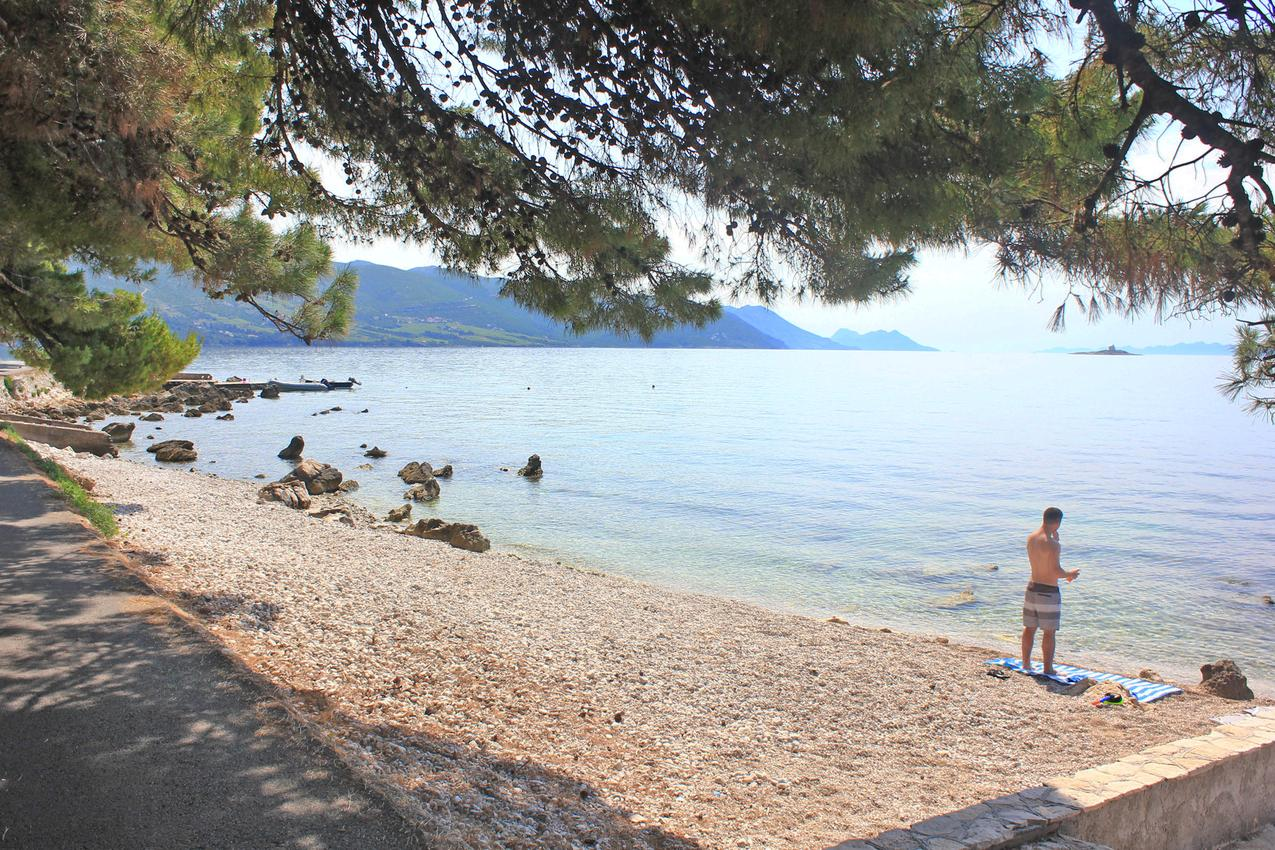 Ferienwohnung im Ort Orebi (Peljeaac), Kapazität 4+1 (1013521), Orebić, Insel Peljesac, Dalmatien, Kroatien, Bild 12