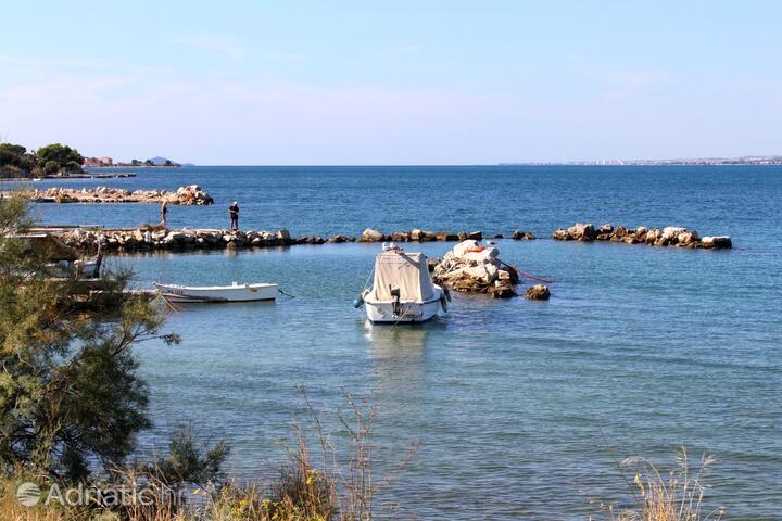 Neviđane на острове Pašman (Sjeverna Dalmacija)
