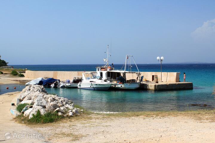 Sušica на острове Ugljan (Sjeverna Dalmacija)