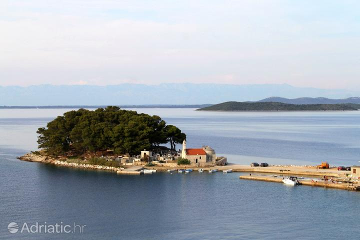 Savar na otoku Dugi otok (Sjeverna Dalmacija)