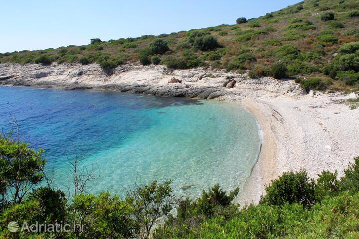 Ripišće na otoku Dugi otok (Sjeverna Dalmacija)