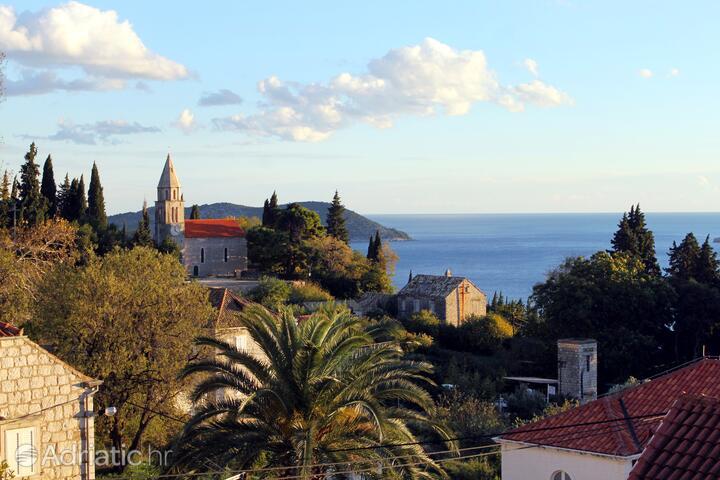 Trsteno na rivieri Dubrovnik (Južna Dalmacija)