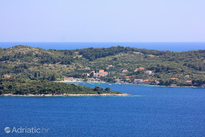 Koločep on the island Elafiti (South Dalmatia)