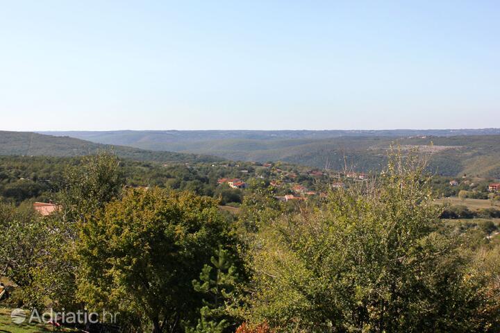 Presika in riviera Labin (Istra)