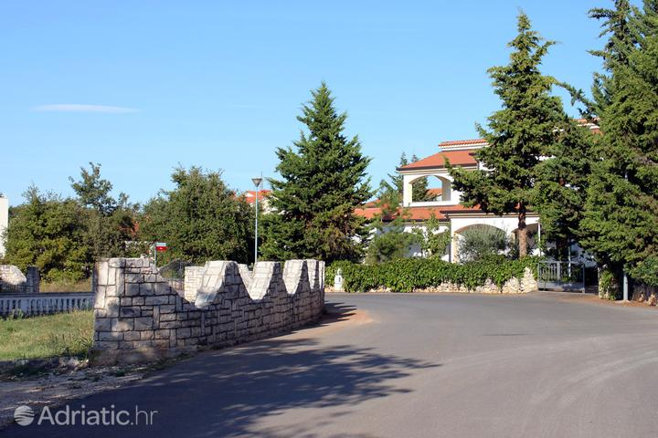 Kukci in riviera Poreč (Istra)