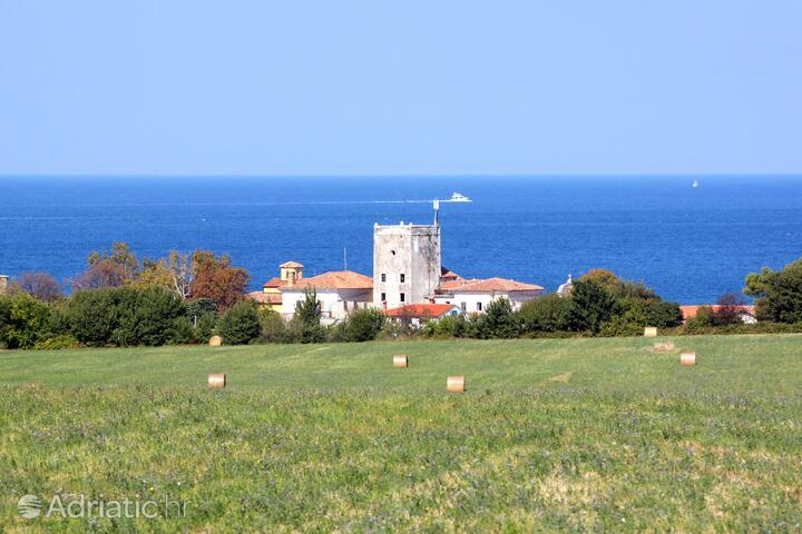 Dajla in riviera Novigrad (Istria)
