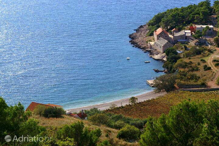 Vela Farska on the island Brač (Srednja Dalmacija)