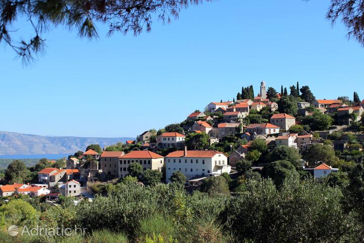 Vrisnik na otoku Hvar (Srednja Dalmacija)