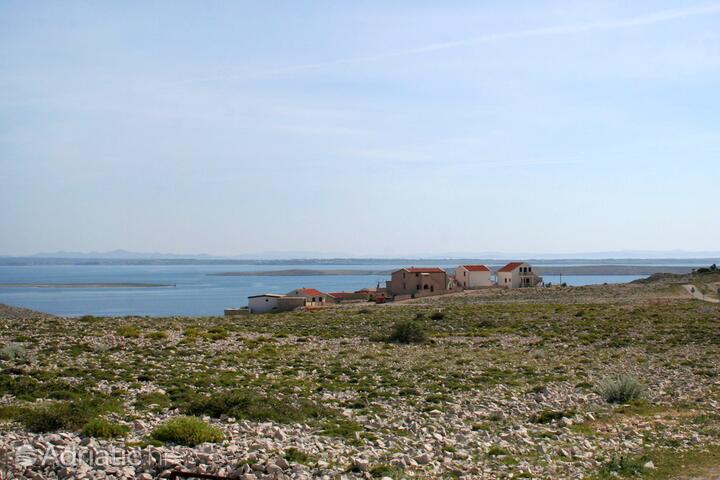 Smokvica sull'isola Pag (Kvarner)