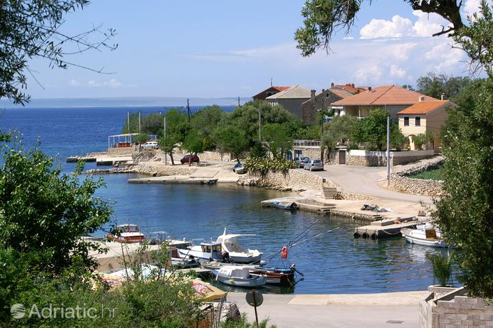 Lun on the island Pag (Kvarner)
