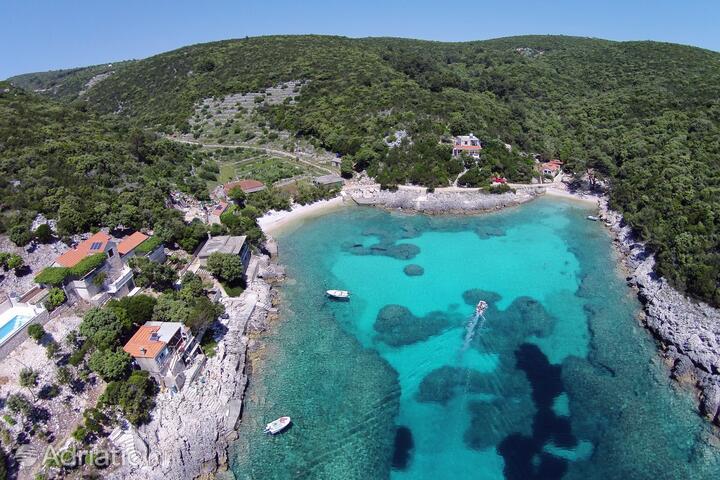 Rasohatica на острове Korčula (Južna Dalmacija)
