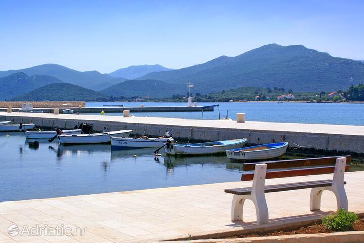 Drače na riviére Pelješac (Južna Dalmacija)