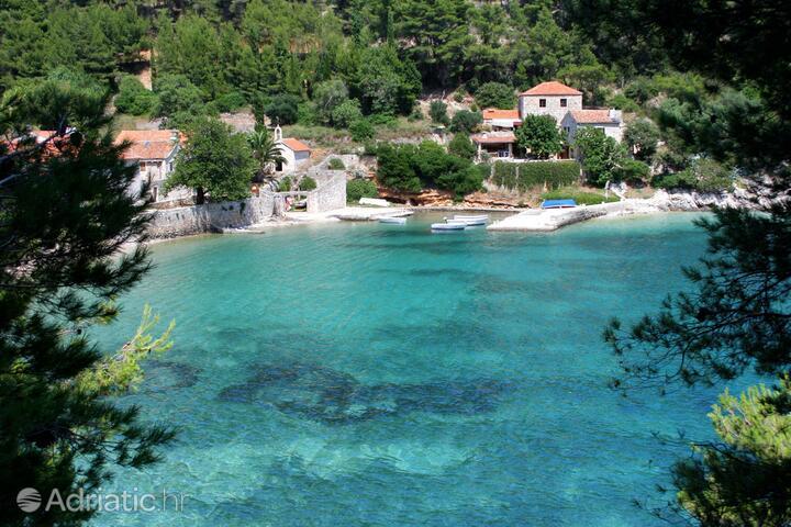 Smrska auf der Insel  Hvar (Srednja Dalmacija)