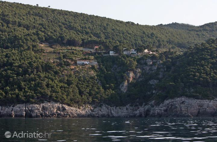 Ropa on the island Mljet (Južna Dalmacija)