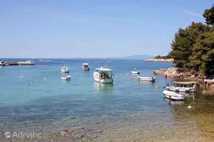 Suha Punta on the island Rab (Kvarner)