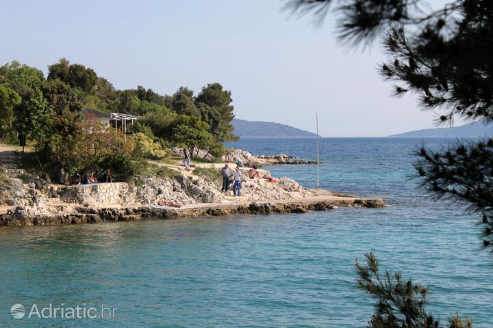 Pinezići on the island Krk (Kvarner)