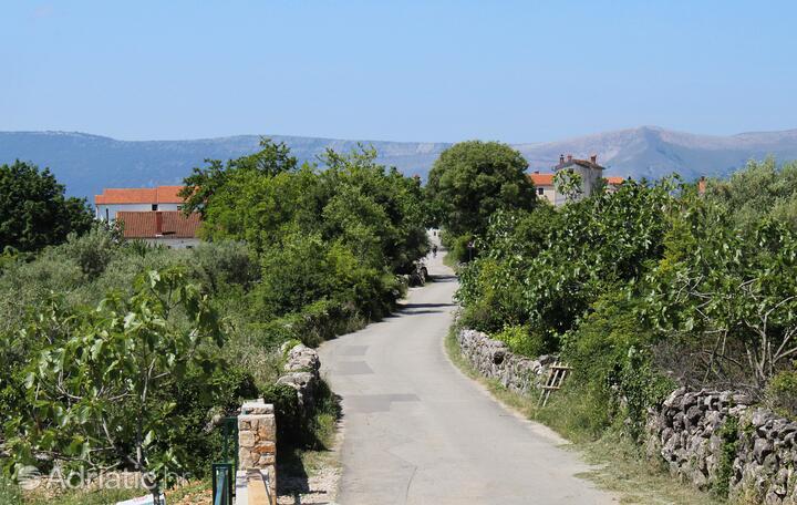 Brzac on the island Krk (Kvarner)