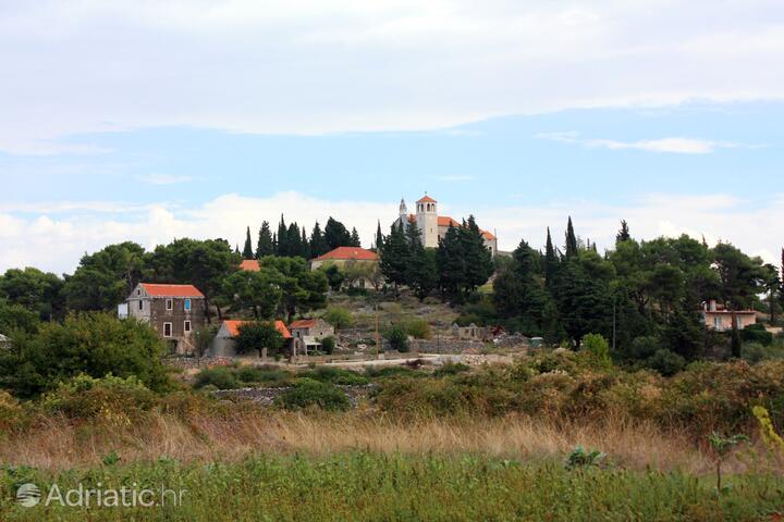 Zastražišće auf der Insel  Hvar (Srednja Dalmacija)