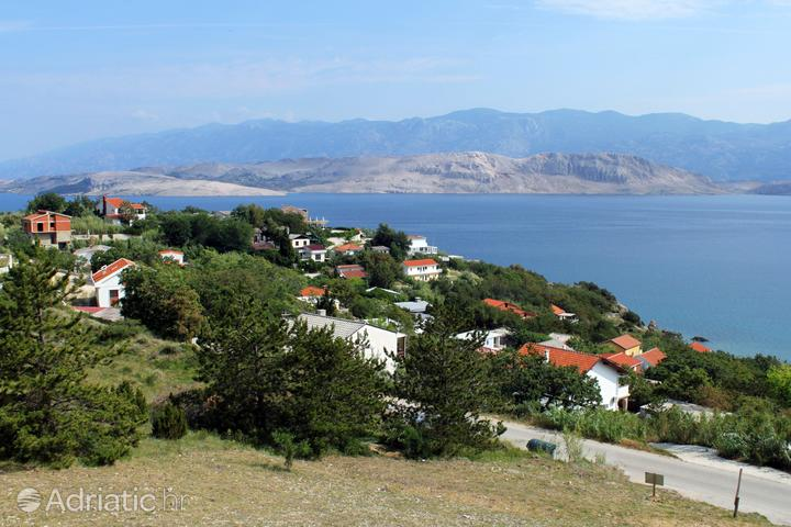 Bosana on the island Pag (Kvarner)