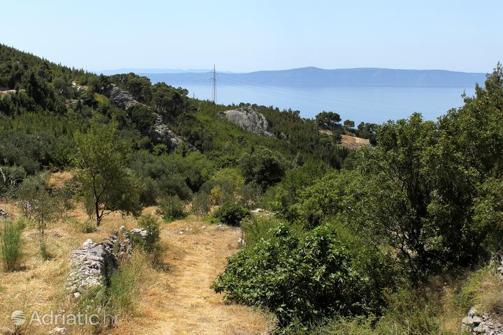 Kotišina u rivijeri Makarska (Srednja Dalmacija)