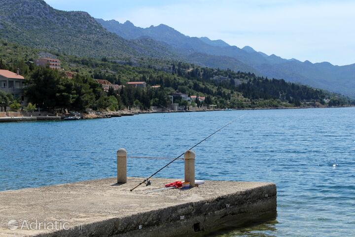 Kozjača na rivieri Paklenica (Severna Dalmacija)