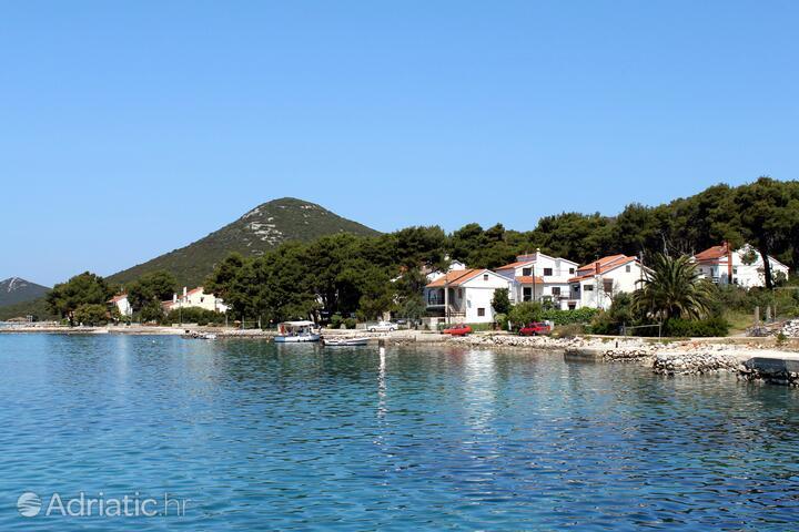 Brgulje na ostrově Molat (Severní Dalmácie)