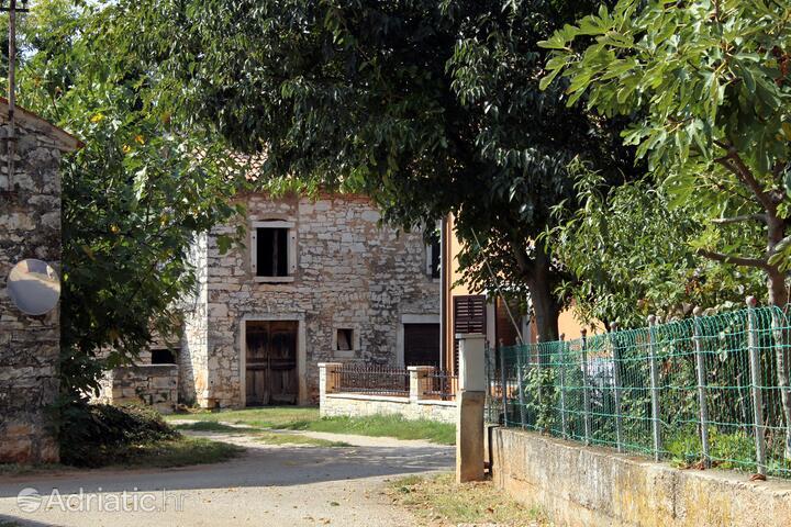 Dolinci in riviera Umag (Istra)