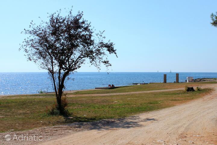 Đuba in riviera Umag (Istra)
