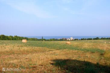 Mareda in riviera Novigrad (Istra)