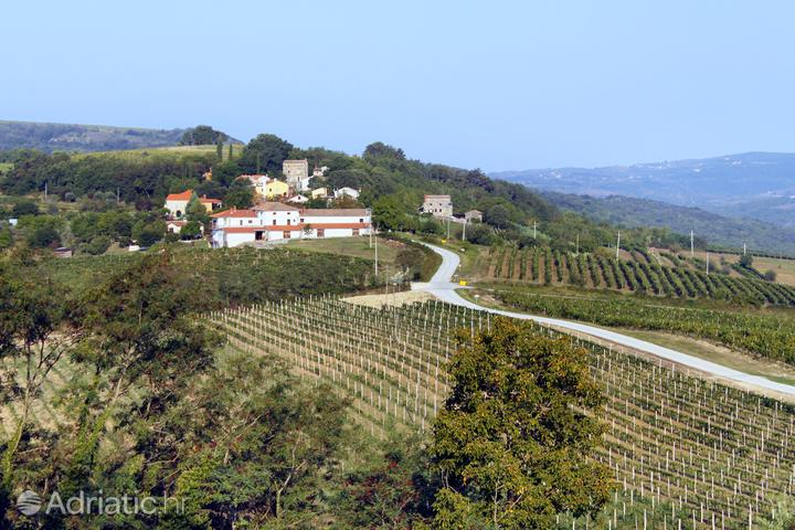 Motovun - Brkač на Ривьере Središnja Istra (Istra)