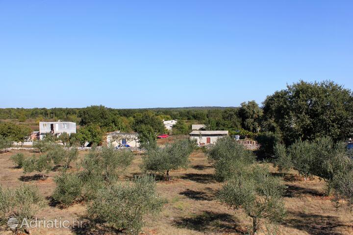 Šišan на Ривьере Medulin (Istra)