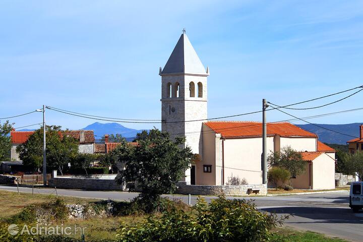 Kavran на Ривьере Marčana (Istra)