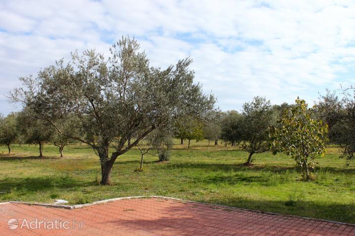Loborika на Ривьере Pula (Istra)