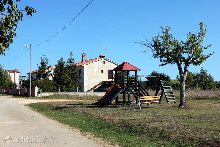 Flengi in riviera Poreč (Istra)