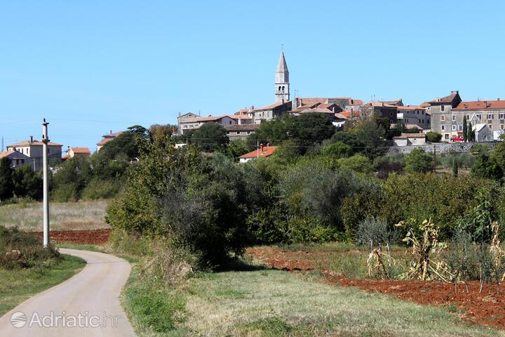 Višnjan - Strpačići in riviera Središnja Istra (Istra)