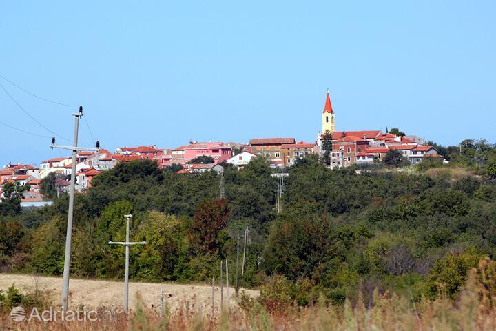 Nova Vas in riviera Novigrad (Istra)