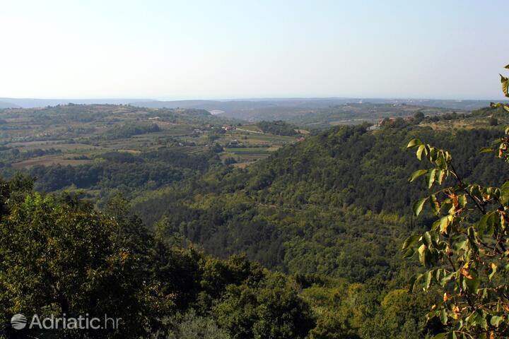 Grožnjan - Bijele Zemlje in riviera Središnja Istra (Istra)