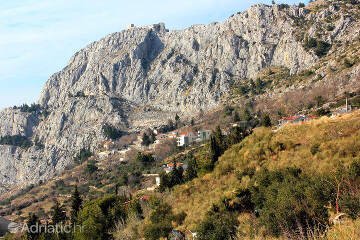 Borak in riviera Omiš (Srednja Dalmacija)